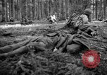 Image of Japanese-American 442nd Infantry Vosges Mountains France, 1944, second 19 stock footage video 65675052439