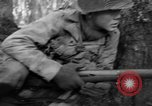 Image of Japanese-American 442nd Infantry Vosges Mountains France, 1944, second 23 stock footage video 65675052439