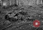 Image of Japanese-American 442nd Infantry Vosges Mountains France, 1944, second 25 stock footage video 65675052439