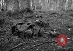 Image of Japanese-American 442nd Infantry Vosges Mountains France, 1944, second 26 stock footage video 65675052439