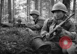 Image of Japanese-American 442nd Infantry Vosges Mountains France, 1944, second 28 stock footage video 65675052439