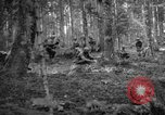 Image of Japanese-American 442nd Infantry Vosges Mountains France, 1944, second 39 stock footage video 65675052439