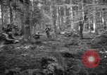Image of Japanese-American 442nd Infantry Vosges Mountains France, 1944, second 41 stock footage video 65675052439