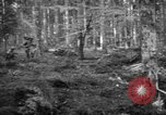 Image of Japanese-American 442nd Infantry Vosges Mountains France, 1944, second 42 stock footage video 65675052439
