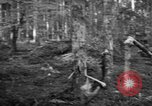 Image of Japanese-American 442nd Infantry Vosges Mountains France, 1944, second 43 stock footage video 65675052439