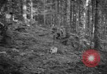 Image of Japanese-American 442nd Infantry Vosges Mountains France, 1944, second 47 stock footage video 65675052439