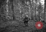 Image of Japanese-American 442nd Infantry Vosges Mountains France, 1944, second 51 stock footage video 65675052439