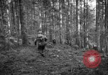 Image of Japanese-American 442nd Infantry Vosges Mountains France, 1944, second 52 stock footage video 65675052439