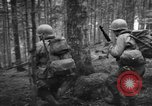 Image of Japanese-American 442nd Infantry Vosges Mountains France, 1944, second 56 stock footage video 65675052439