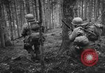 Image of Japanese-American 442nd Infantry Vosges Mountains France, 1944, second 57 stock footage video 65675052439