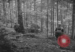 Image of Japanese-American 442nd Infantry Vosges Mountains France, 1944, second 61 stock footage video 65675052439