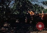 Image of tractor Rapid City South Dakota USA, 1972, second 51 stock footage video 65675052539