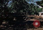 Image of tractor Rapid City South Dakota USA, 1972, second 59 stock footage video 65675052539