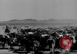 Image of cowboys on ranch United States USA, 1940, second 10 stock footage video 65675052587