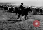 Image of cowboys on ranch United States USA, 1940, second 19 stock footage video 65675052587