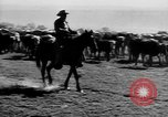 Image of cowboys on ranch United States USA, 1940, second 21 stock footage video 65675052587