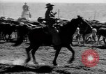 Image of cowboys on ranch United States USA, 1940, second 24 stock footage video 65675052587