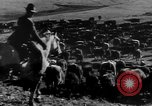 Image of cowboys on ranch United States USA, 1940, second 30 stock footage video 65675052587