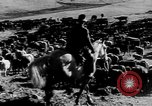 Image of cowboys on ranch United States USA, 1940, second 31 stock footage video 65675052587