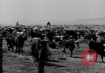 Image of cowboys on ranch United States USA, 1940, second 56 stock footage video 65675052587