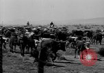 Image of cowboys on ranch United States USA, 1940, second 58 stock footage video 65675052587