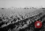 Image of wrecked planes United States USA, 1955, second 5 stock footage video 65675052616