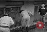 Image of men outside houses Sierra Madre California USA, 1954, second 16 stock footage video 65675052625