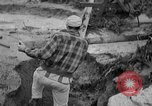 Image of men outside houses Sierra Madre California USA, 1954, second 25 stock footage video 65675052625