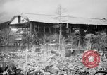 Image of Japanese patients Hiroshima Japan, 1945, second 24 stock footage video 65675052711
