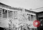Image of Japanese patients Hiroshima Japan, 1945, second 31 stock footage video 65675052711