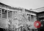 Image of Japanese patients Hiroshima Japan, 1945, second 34 stock footage video 65675052711