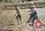 Image of 1st Battalion 5th Marine Regiment Shima Okinawa Ryukyu Islands, 1945, second 12 stock footage video 65675052748