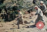 Image of 1st Battalion 5th Marine Regiment Shima Okinawa Ryukyu Islands, 1945, second 19 stock footage video 65675052748