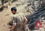 Image of 1st Battalion 5th Marine Regiment Shima Okinawa Ryukyu Islands, 1945, second 40 stock footage video 65675052748
