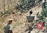 Image of 1st Battalion 5th Marine Regiment Shima Okinawa Ryukyu Islands, 1945, second 41 stock footage video 65675052748
