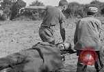 Image of 165th Infantry 27th Division Shima Okinawa Ryukyu Islands, 1945, second 10 stock footage video 65675052951