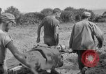 Image of 165th Infantry 27th Division Shima Okinawa Ryukyu Islands, 1945, second 11 stock footage video 65675052951