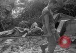 Image of 165th Infantry 27th Division Shima Okinawa Ryukyu Islands, 1945, second 31 stock footage video 65675052951