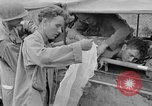 Image of 165th Infantry 27th Division Shima Okinawa Ryukyu Islands, 1945, second 54 stock footage video 65675052953