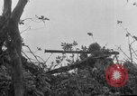 Image of 305th Infantry 77th Division Yuza Okinawa Ryukyu Islands, 1945, second 15 stock footage video 65675052962