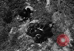 Image of 32nd Infantry 7th Division Okinawa Ryukyu Islands, 1945, second 17 stock footage video 65675052969