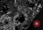 Image of 32nd Infantry 7th Division Okinawa Ryukyu Islands, 1945, second 41 stock footage video 65675052969