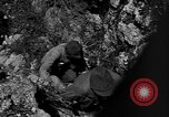 Image of 32nd Infantry 7th Division Okinawa Ryukyu Islands, 1945, second 43 stock footage video 65675052969
