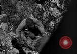 Image of 32nd Infantry 7th Division Okinawa Ryukyu Islands, 1945, second 44 stock footage video 65675052969