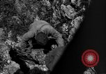 Image of 32nd Infantry 7th Division Okinawa Ryukyu Islands, 1945, second 45 stock footage video 65675052969