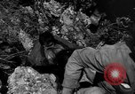 Image of 32nd Infantry 7th Division Okinawa Ryukyu Islands, 1945, second 48 stock footage video 65675052969