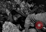 Image of 32nd Infantry 7th Division Okinawa Ryukyu Islands, 1945, second 49 stock footage video 65675052969