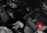 Image of 32nd Infantry 7th Division Okinawa Ryukyu Islands, 1945, second 54 stock footage video 65675052969