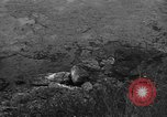 Image of 32nd Infantry 7th Division Okinawa Ryukyu Islands, 1945, second 26 stock footage video 65675052972