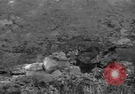 Image of 32nd Infantry 7th Division Okinawa Ryukyu Islands, 1945, second 40 stock footage video 65675052972